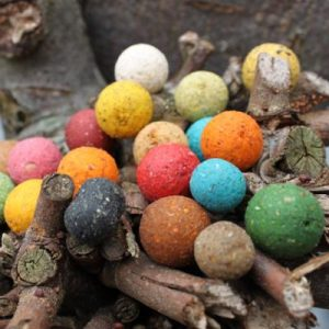 1. Boilies